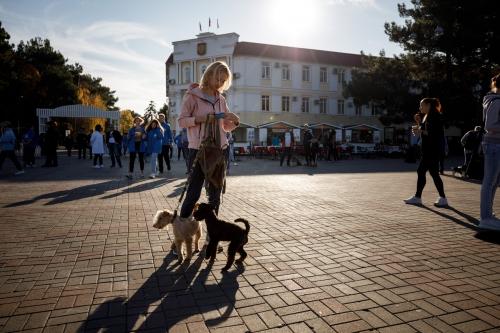 Фестиваль домашних животных «Верные друзья», 2019